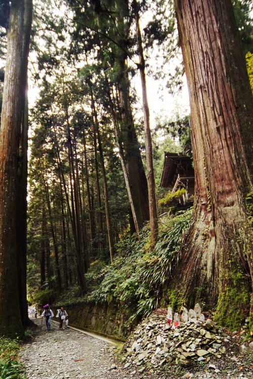 44番大宝寺(愛媛県久万高原町)イメージ19