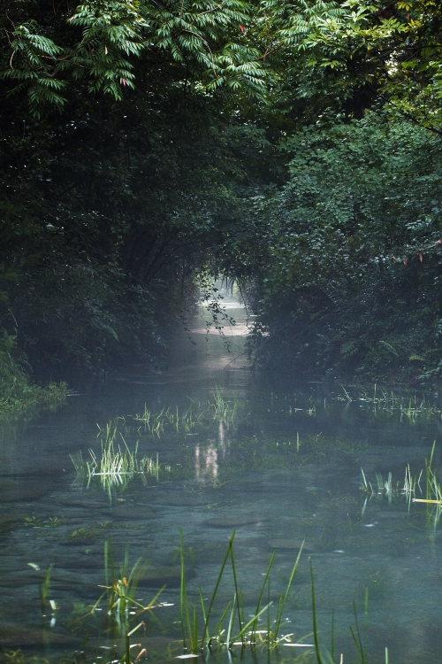 三ヶ村泉(愛媛県東温市)イメージ1
