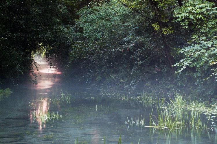 三ヶ村泉(愛媛県東温市)イメージ2