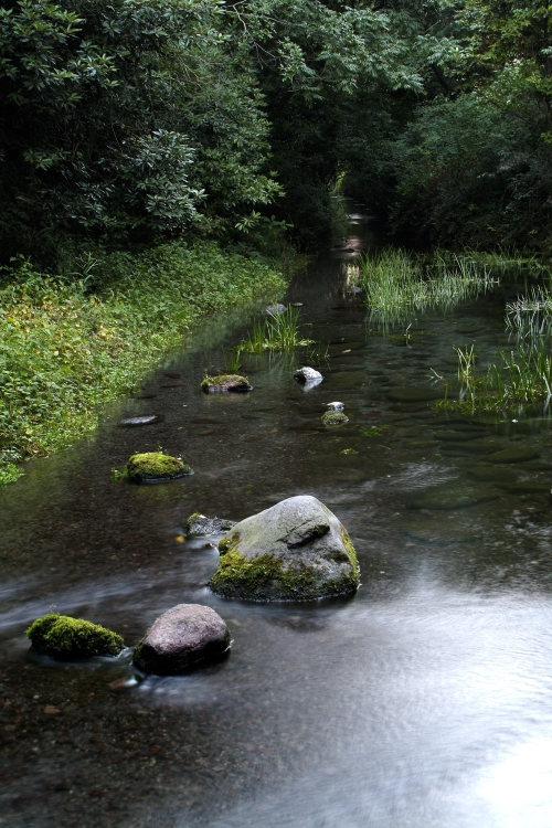 三ヶ村泉(愛媛県東温市)イメージ14