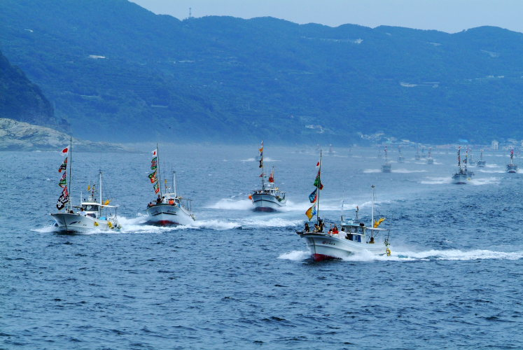 三崎豊漁祭(愛媛県伊方町)イメージ1