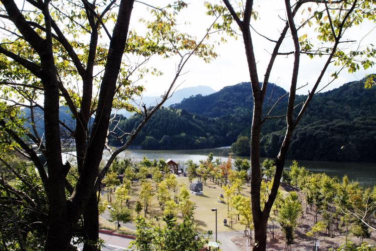 中山池自然公園(愛媛県宇和島市)_2イメージ4