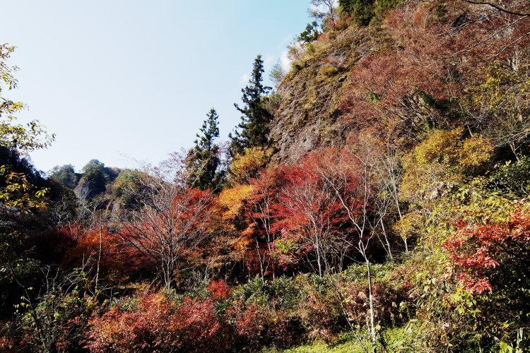 古岩屋(愛媛県久万高原町)イメージ1