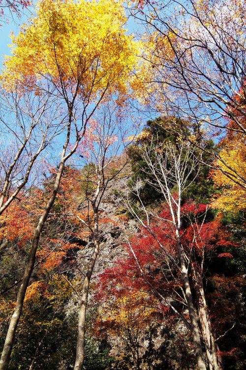 古岩屋(愛媛県久万高原町)イメージ2