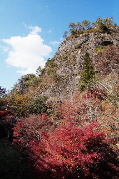 古岩屋(愛媛県久万高原町)イメージ8