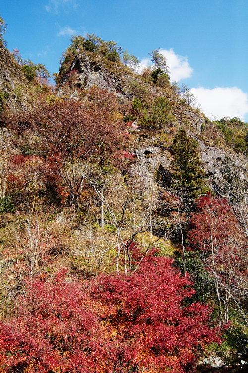 古岩屋(愛媛県久万高原町)イメージ10