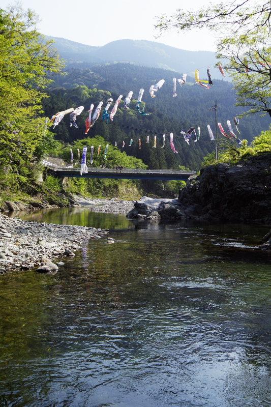 鯉のぼり(愛媛県西条市丹原鞍瀬谷)イメージ1