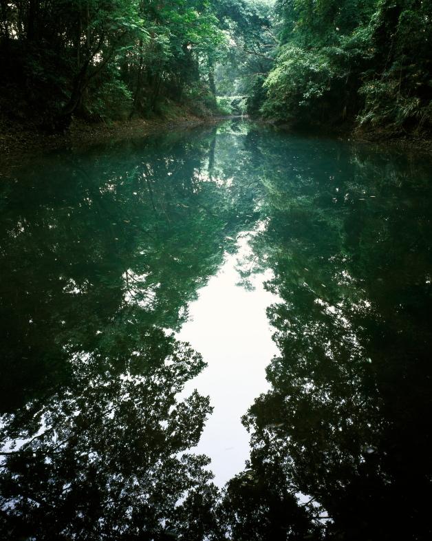 オセキ泉_ 夏 (愛媛県松山市)_2イメージ1