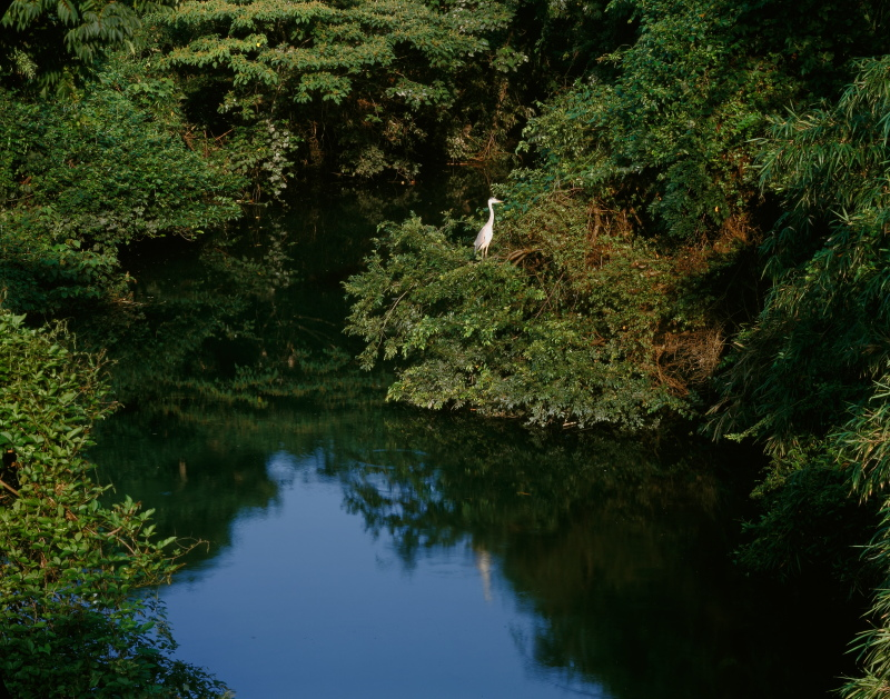 野都子泉_ 秋 (愛媛県東温市)イメージ1