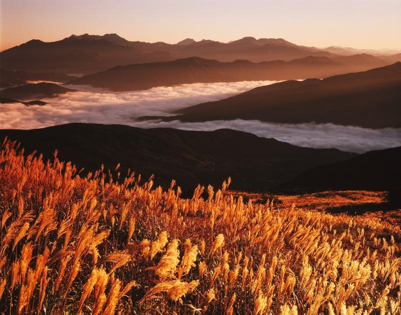 大川嶺から石鎚山を望む_秋(愛媛県久万高原町)イメージ1