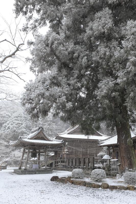 43番 明石寺_冬(愛媛県西予市)イメージ1