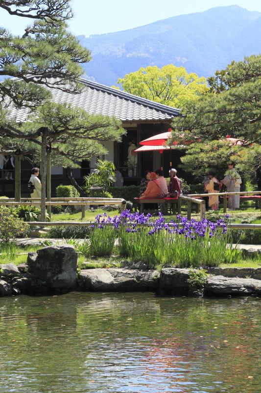 春の呈茶会_4月(愛媛県宇和島市天赦園)イメージ3