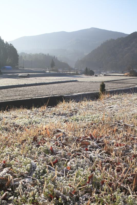 霜の降りた朝_3月(愛媛県久万高原町)イメージ1
