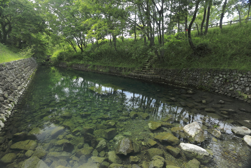 龍沢泉_5月(愛媛県東温市)_1イメージ3