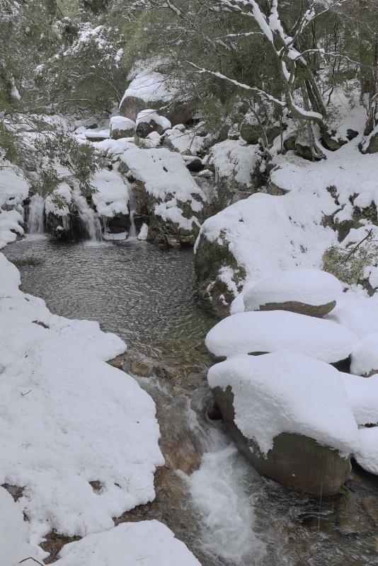 滑床渓谷_1月(雪、愛媛県松野町)_1イメージ1