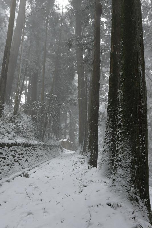 44番 大宝寺_冬・雪(愛媛県久万高原町)_1イメージ1
