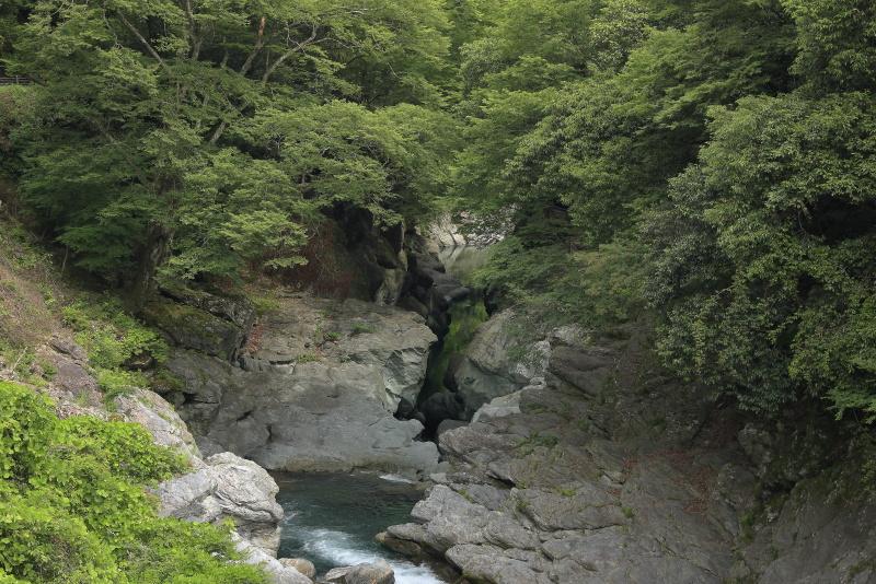 土釜_6月(徳島県つるぎ町)イメージ4