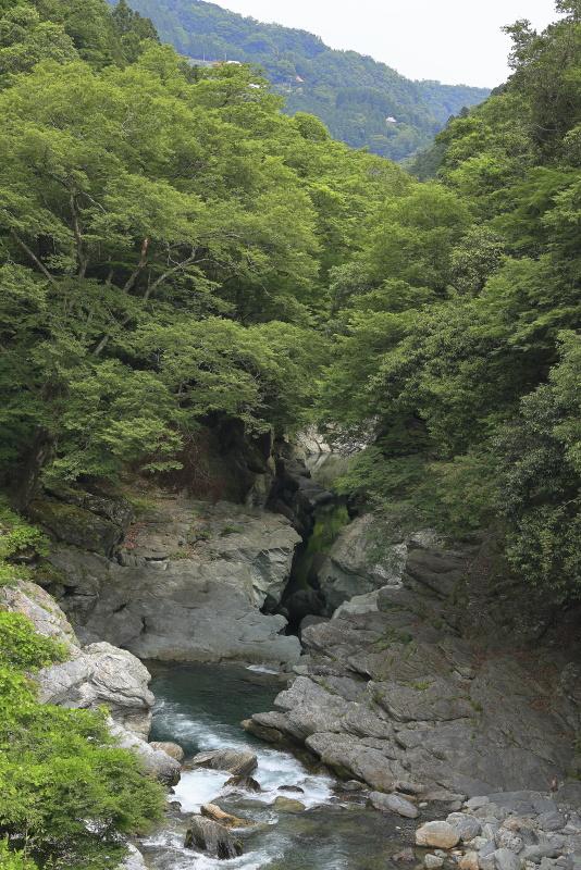 土釜_6月(徳島県つるぎ町)イメージ5
