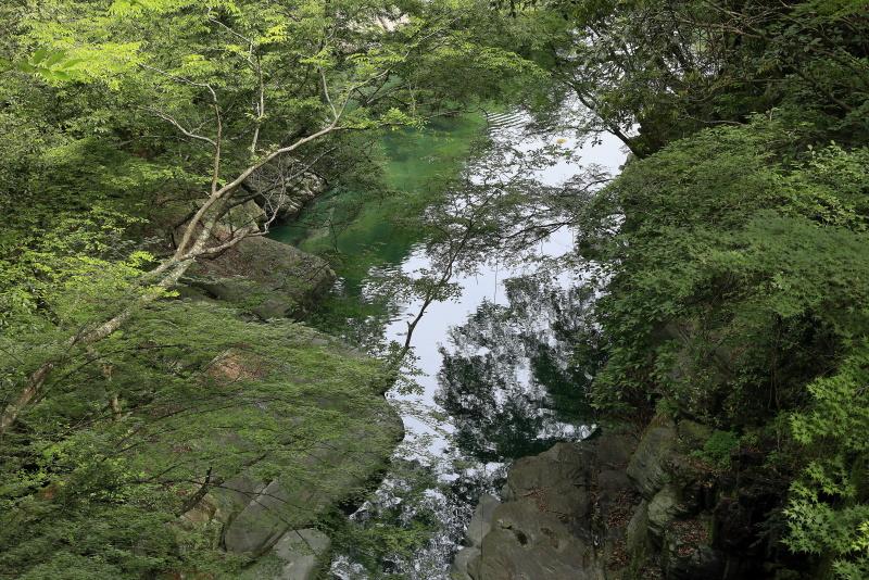 土釜_6月(徳島県つるぎ町)イメージ7